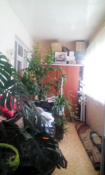 Продам 2-комн. квартиру по адресу Россия, Краснодарский край, Геленджик, Озерная ул., 40 фото 9 по выгодной цене